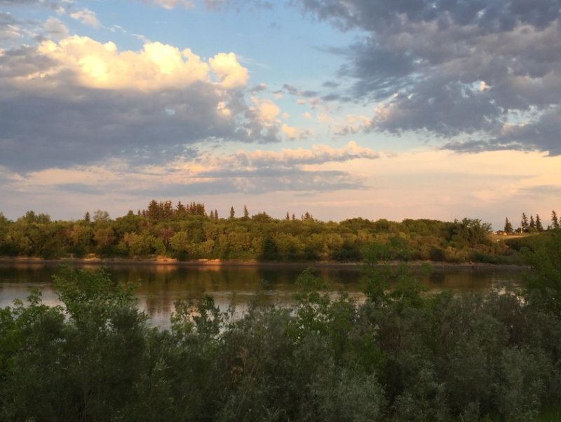 Saskatoon River Bank